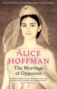 The Marriage of Opposites, Hardback