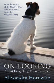 On Looking : About Everything There is to See, Paperback