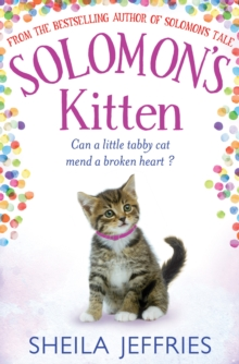 Solomon's Kitten, Hardback Book