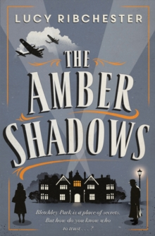 The Amber Shadows, Paperback Book