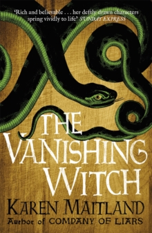 The Vanishing Witch, Paperback