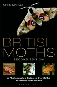 British Moths : A Photographic Guide to the Moths of Britain and Ireland, Hardback