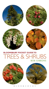 Pocket Guide to Trees and Shrubs, Paperback