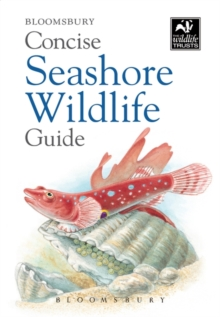 Concise Seashore Wildlife Guide, Paperback