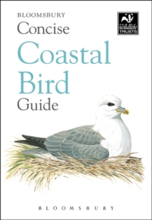 Concise Coastal Bird Guide, Paperback