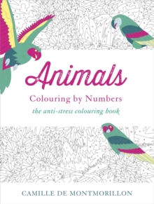 Animals : Colouring by Numbers, Paperback