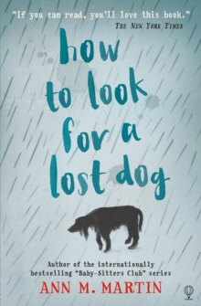 How to Look for a Lost Dog, Paperback