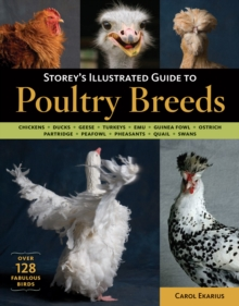 Storey's Illustrated Guide to Poultry Breeds, Paperback