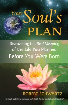 Your Soul's Plan : Discovering the Real Meaning of the Life You Planned Before You Were Born, Paperback