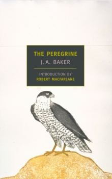 The Peregrine, Paperback