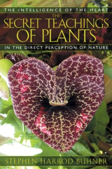 The Secret Teachings of Plants : The Intelligence of the Heart in the Direct Perception of Nature, Paperback Book