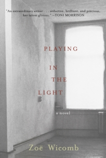 Playing in the Light : A Novel, Hardback Book