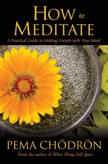 How to Meditate : A Practical Guide to Making Friends with Your Mind, Hardback