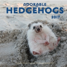Adorable Hedgehogs : 16-Month Calendar September 2016 Through December 2017, Calendar