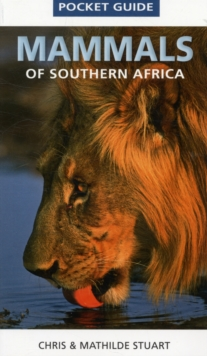 Pocket Guide Mammals of Southern Africa, Paperback