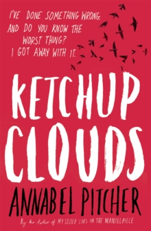 Ketchup Clouds, Paperback