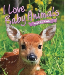I Love: Baby Animals, Other book format Book