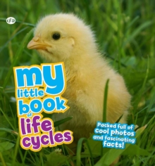 My Little Book of Life Cycles, Hardback
