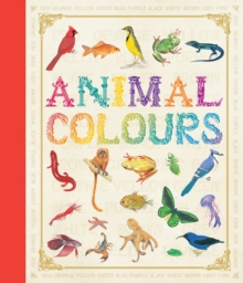 First Concept: Animal Colours, Hardback
