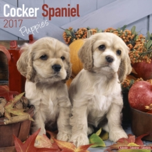 Cocker Spaniel Puppies Calendar 2017, Paperback