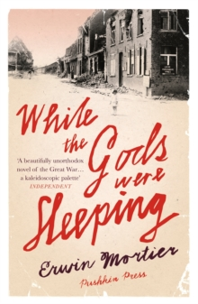 While the Gods Were Sleeping, Paperback Book