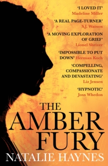 The Amber Fury, Paperback Book