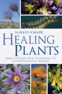 Healing Plants : Herbal Remedies from Traditional to Anthroposophical Medicine, Paperback