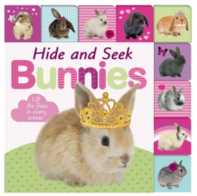 Hide and Seek Bunnies, Board book