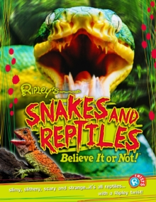 Snakes and Reptiles, Paperback