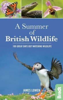 A Summer of British Wildlife : 100 Great Days Out Watching Wildlife, Paperback