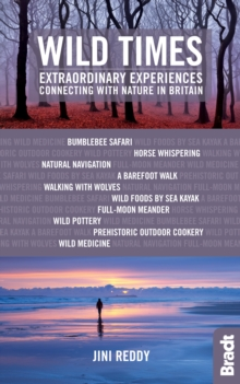 Wild Times : Extraordinary Experiences Connecting with Nature in Britain, Paperback