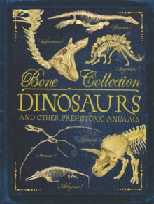 Bone Collections: Dinosaurs, Paperback Book