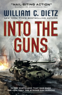 Into the Guns, Paperback