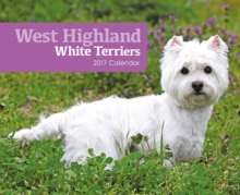 WEST HIGHLAND WHITE TERRIERS B,