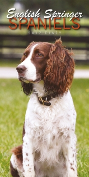 ENGLISH SPRINGER SPANIELS SLIM D,
