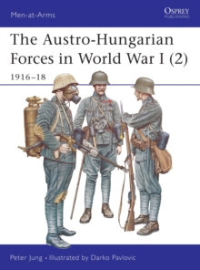 The Austro-Hungarian Forces in World War I : 1916-18 v. 2, Paperback Book