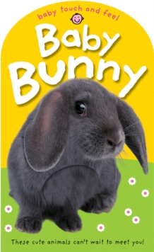 Baby Bunny, Board book