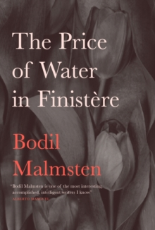 The Price of Water in Finistere, Hardback Book
