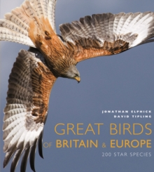 Great Birds of Britain and Europe : 200 Star Species, Other book format