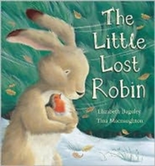The Little Lost Robin, Hardback Book