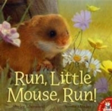 Run, Little Mouse, Run!, Paperback
