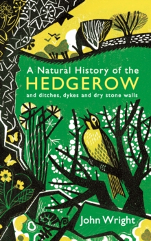 A Natural History of the Hedgerow : And Ditches, Dykes and Dry Stone Walls, Hardback Book