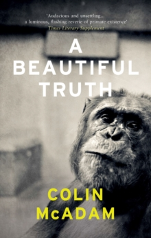 A Beautiful Truth, Paperback