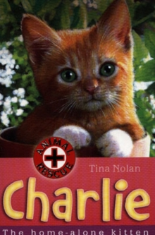 Charlie : The Home-alone Kitten, Paperback Book