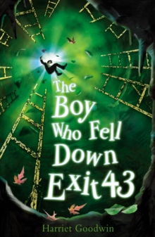 The Boy Who Fell Down Exit 43, Paperback