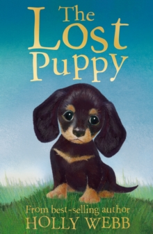 The Lost Puppy, Paperback