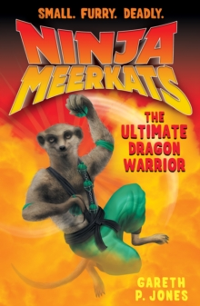 The Ultimate Dragon Warrior, Paperback
