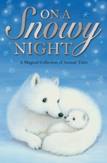 On a Snowy Night, Paperback Book