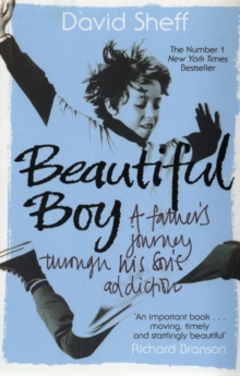 Beautiful Boy : A Father's Journey Through His Son's Addiction, Paperback