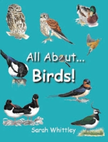 All About Birds, Hardback